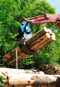 claw crane moving logs