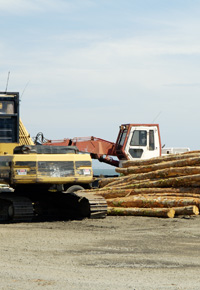 lumber operations overseas