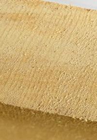 Yellow cedar end grain