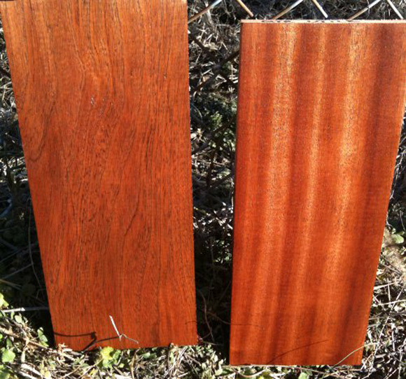 Flat sawn Utile (left) and quartersawn Utile (right)